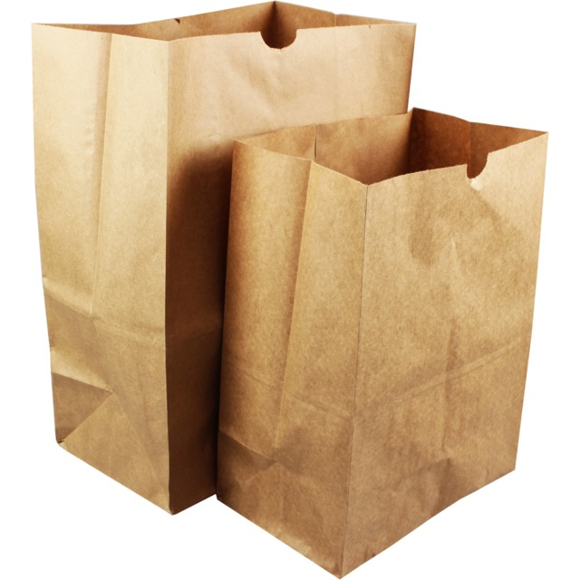 Kraft bags without handles (22x30x12cm) with one color printing.